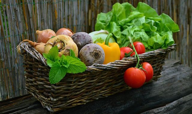 Vegetales ecologicos sacados del huerto en el balcon