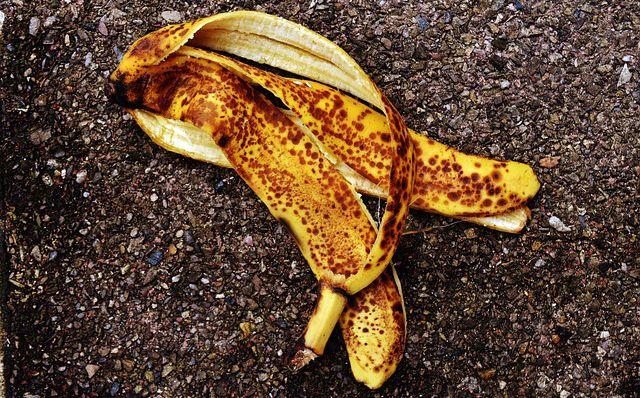 Banana platano peladon para usar como fertilizante compost