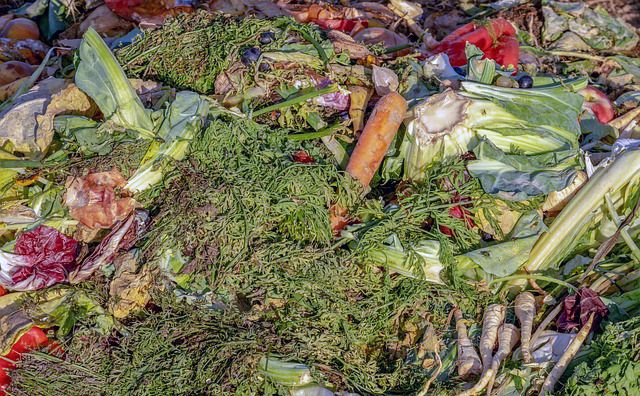 Cosas que no deben ir en el compostaje o compost