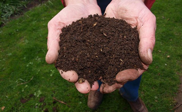 Fertilizante casero orgánico