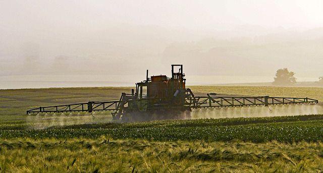 Plantación con pesticidas