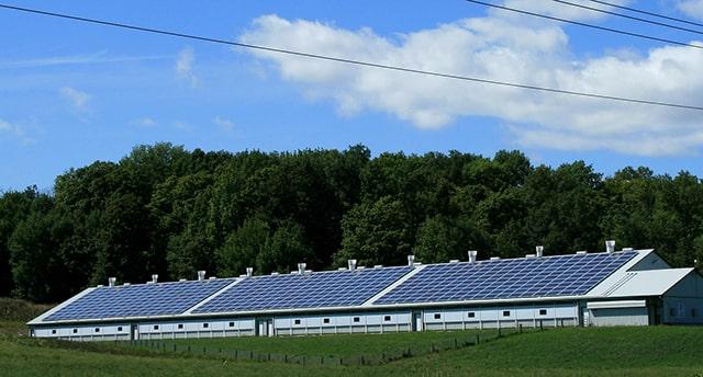 Paneles solares para una vida sostenible