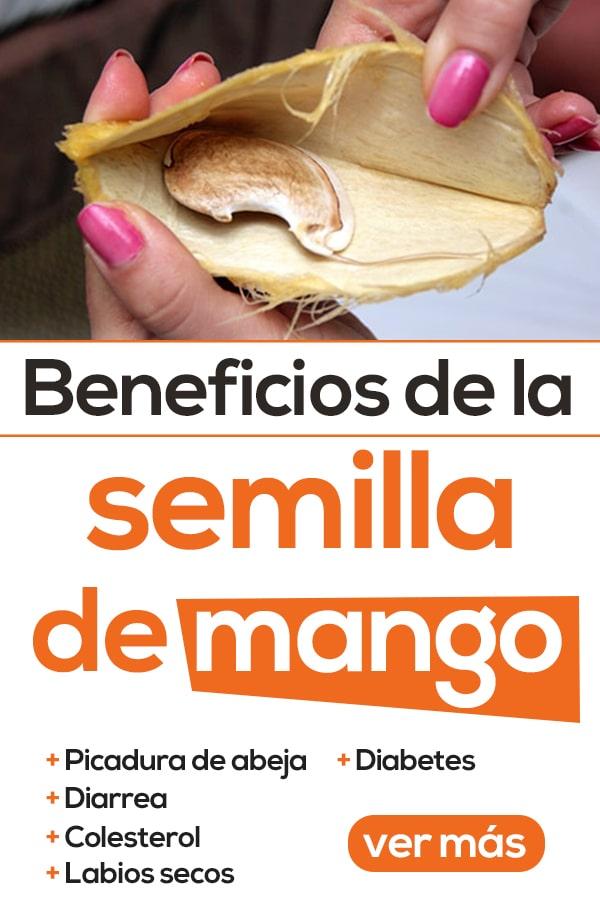 Beneficios de las semillas de mango